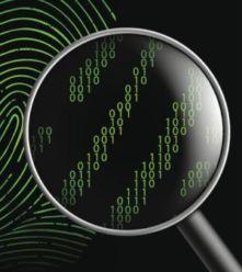 Computer Forensics 100719659 Large