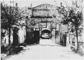 Kamp Jasenovac Min
