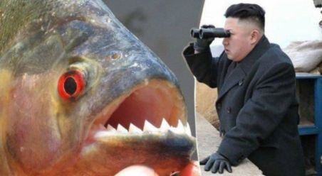 Piranha Min