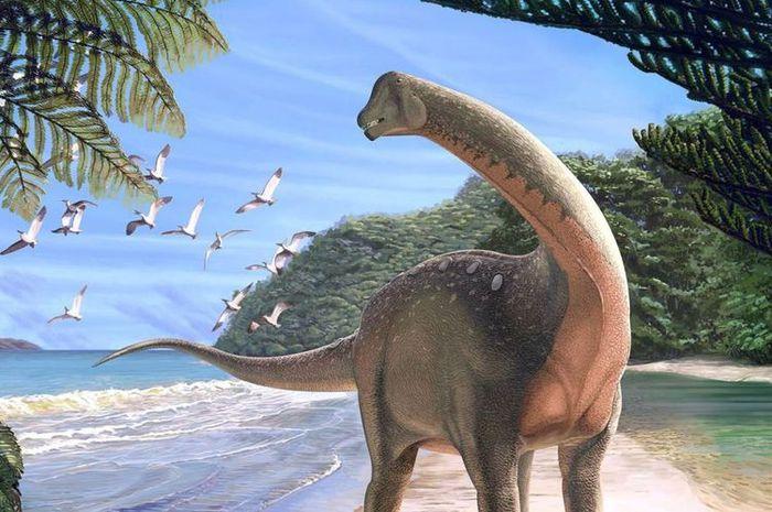 19812 Mansourasaurus Shahinae