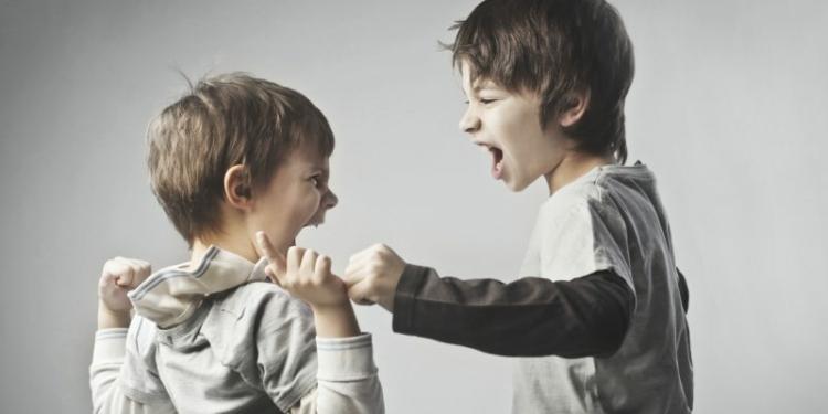 Penyebab Dan Cara Mengatasi Anak Suka Bertindak Kasar