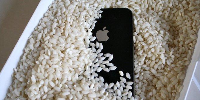 cuma mitos beras tak bisa selamatkan smartphone basah tercebur air