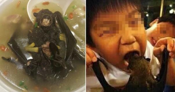 Indonesia Waspadai Virus Corona! Faktor Utama Virus Corona Dikarenakan Sup Kelelawar?