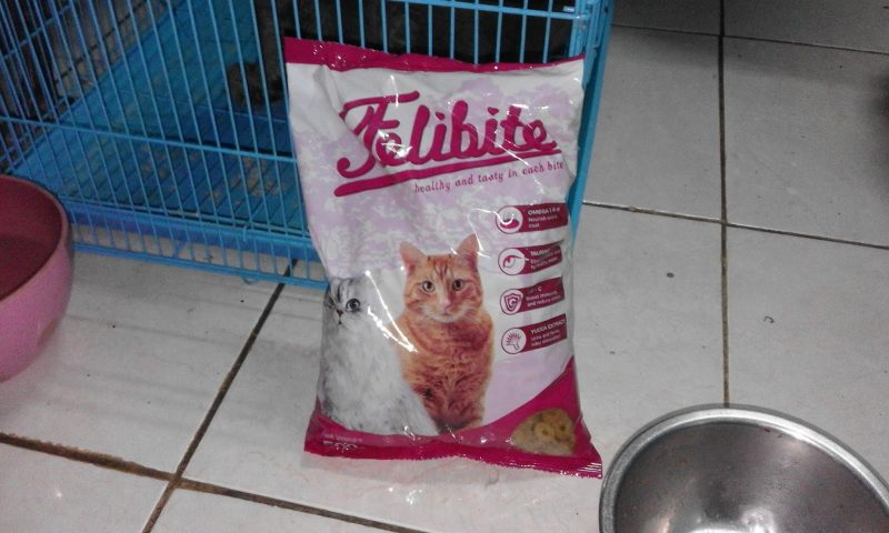 Felibite - Makanan Kucing Murah