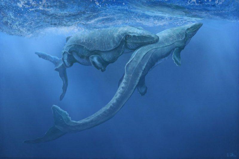 Mosasaurus Lebih Besar Dari T Rex Kenali 4 Fakta Mosasaurus 1