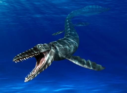 Mosasaurus Lebih Besar Dari T-Rex, Kenali 4 Fakta Mosasaurus