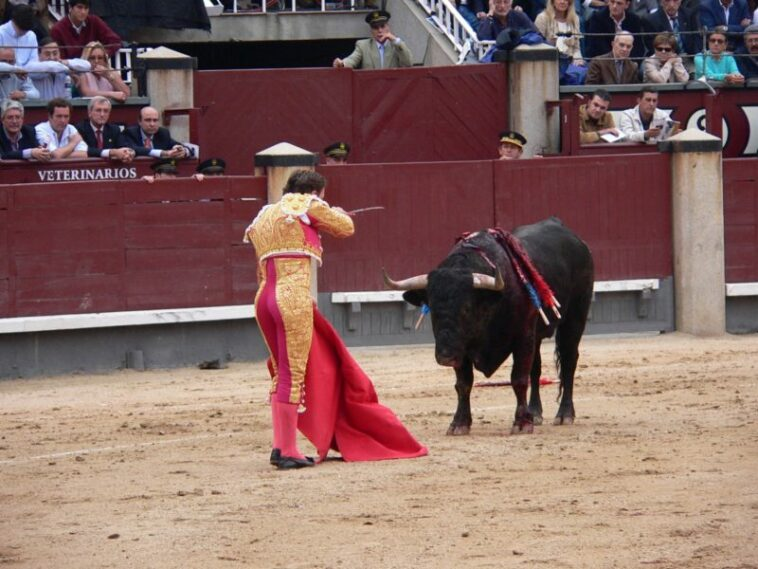 Matador Dan Banteng