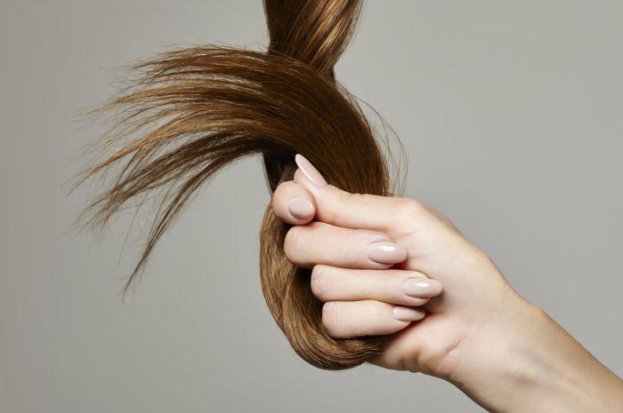 Rambut Dan Kuku