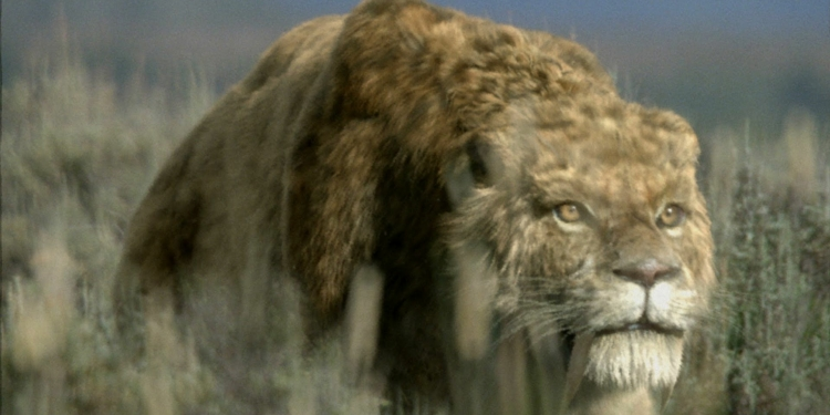 Smilodon From Ice Age