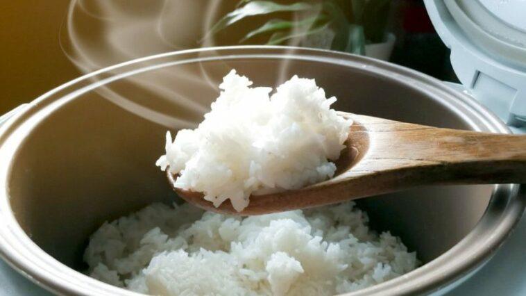 Cara Ampuh Nasi Tidak Cepat Basi