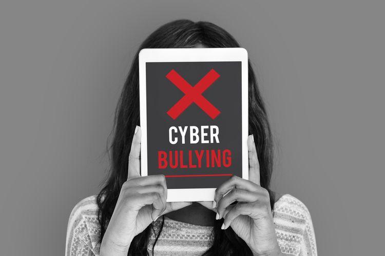 CyberBullying bully