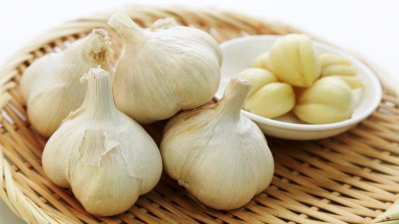 Manfaat Hebat Bawang Putih Bagi Kesehatan Tubuh