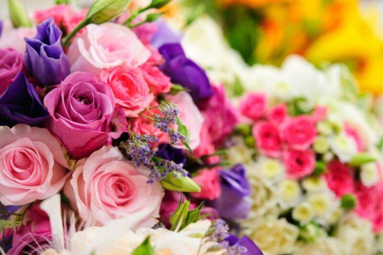 Bunga termahal   ornamentalis.com