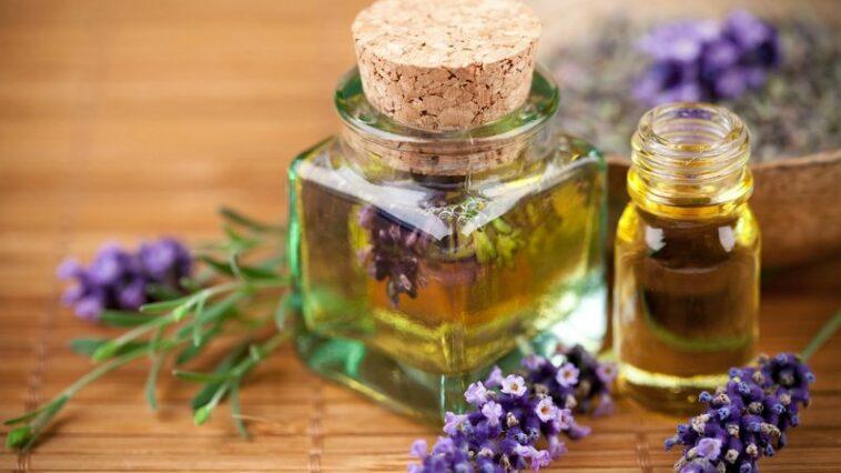 Manfaat bunga lavender