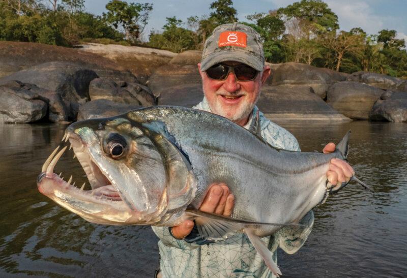 Ikan Paling Berbahaya Ikan Payara