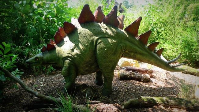 Jenis Dinosaurus Stegosaurus