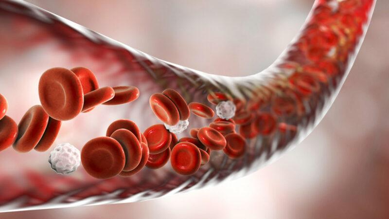 Melancarkan Peredaran Darah