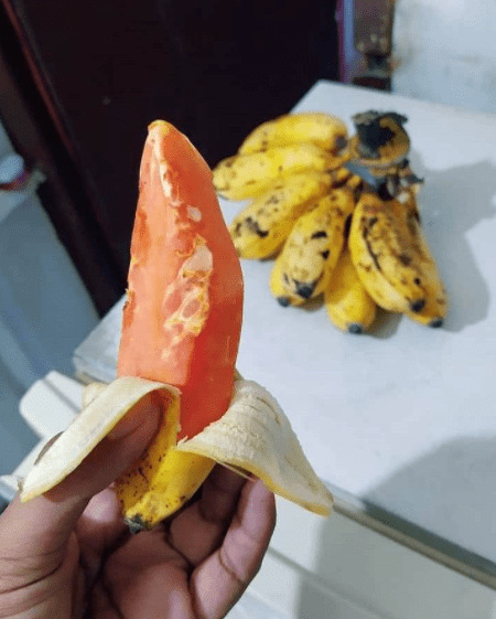 buah pepaya dan pisang