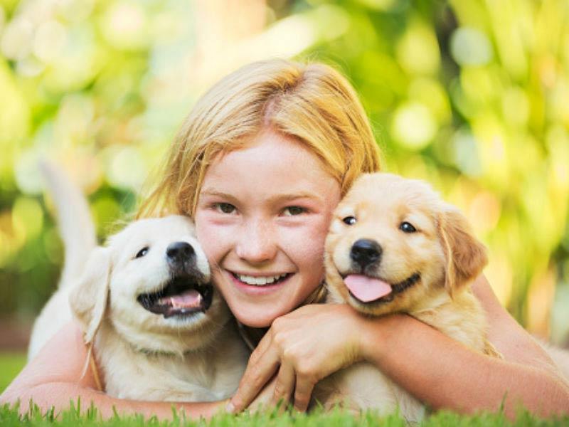 manfaat menyehatkan anak anjing