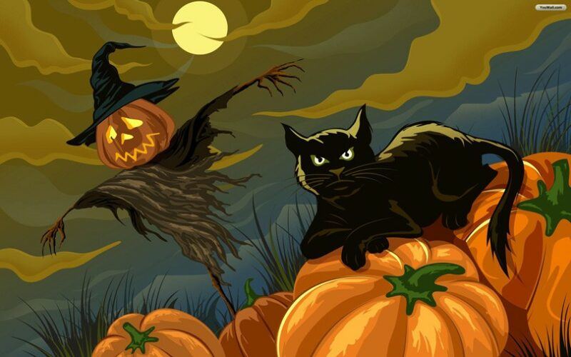 Halloween Black Cat Wallpaper