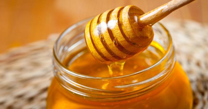 Health Benefits Of Honey 1100x355 1