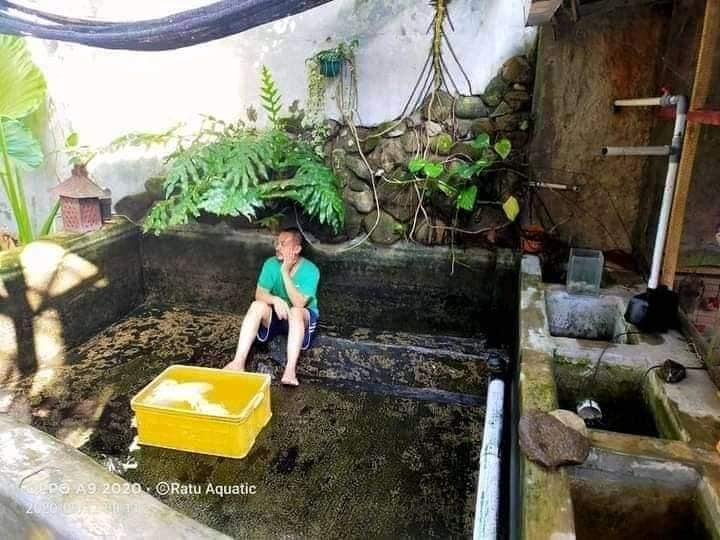 Pria ini bersihkan kolam, setelah bersih malah dipecat