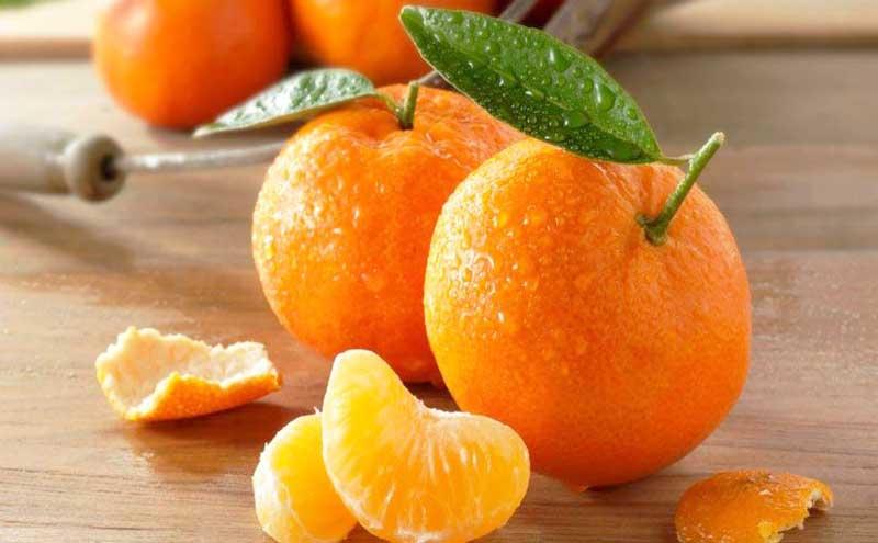 Buah Vitamin C Jeruk