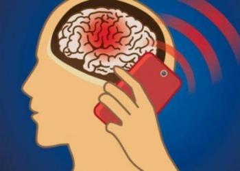 Smart[hone Otak