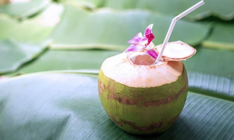 Menu buka puasa es kelapa muda